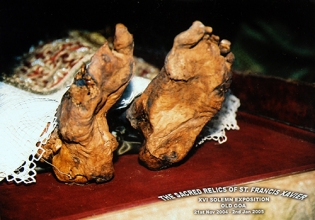 Holy feet: the sacred relics of St. Francis Xavier. Old Goa, India