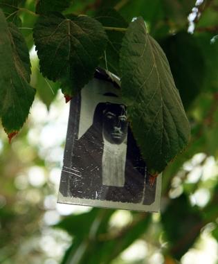Photo tree, Halim al Karim (Bagdad, Iraq), Darat al Funon Gallery, Amman, Jordan 2010