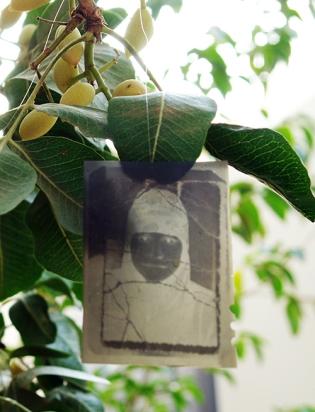 Photo tree, Halim al Karim (Bagdad, Iraq), Darat al Funun Gallery, Amman, Jordan 2010